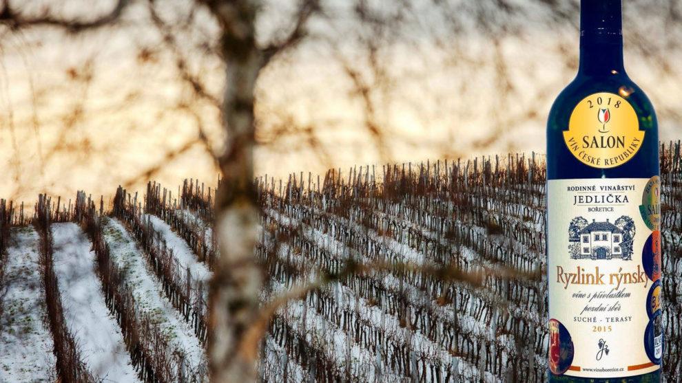 Řízená degustace vín z rodinného vinařství Jedlička Bořetice