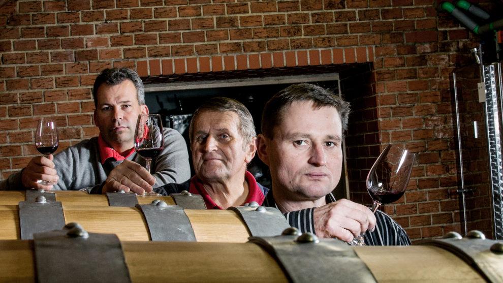 Řízená degustace vín z rodinného vinařství Maláník Osička